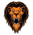 roaring lion head mascot vector image