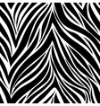 Seamless texture of zebra skin vector image
