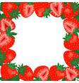 strawberry square border frame frame vector image vector image