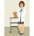 veterinarian woman standing with labrador puppy vector image