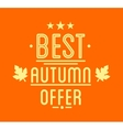 Autumn sale Logotypet Special offer badge vector image vector image