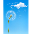 Background with a dandelion in front of a blue sky vector image vector image