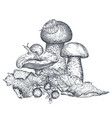 composition of hand drawn forest mushroom vector image