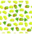 fresh kiwi and slice vector image vector image