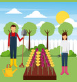 gardeners working field with flowers tools tree vector image