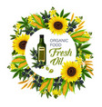 natural oil and ingredients vector image