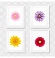 picture frame with flowers isolated transparent vector image