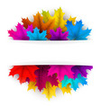 autumn background with beautiful maple leaves vector image vector image