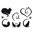 cat logo design set vector image vector image