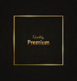 frame-empty-gold-black-two vector image vector image