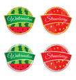 Label of fruit watermelon and strawberry design