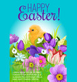 easter greeting poster chick and flowers vector image vector image