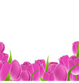 Frame Of Pink Tulips vector image