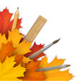 school accessories in the autumn foliage vector image vector image