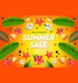 summer sale template web banner vector image