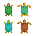 turtle and tortoise in realistic style top view vector image