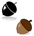Acorn drawing vector image vector image