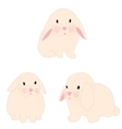 cute rabbit set for baby fashion vector image vector image