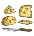 pieces of cheese and knife half round head and vector image vector image