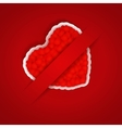 Valentines day background with pocket vector image vector image