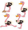 Cartoon funny ostrich collection set vector image