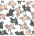 color pig pattern vector image vector image