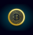 crypto currency golden coin of bitcoin vector image