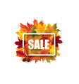 fall leaves sale sign autumn leaf frame nature vector image vector image