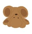 fallen teddy bear vector image vector image