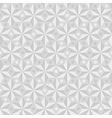 Geometrical pattern in white colors vector image vector image
