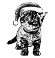 kitten with christmas hat vector image