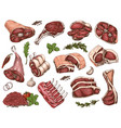 set of different color meats vector image