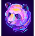 The cute colored panda head vector image vector image