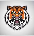 angry tiger head logo mascot vector image vector image