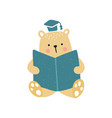 bear education vector image