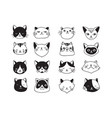 collection of cat icons vector image vector image
