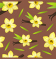 realistic detailed 3d vanilla flower and pods vector image vector image
