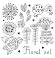 set floral elements isolated for your design vector image