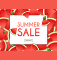 summer sale banner poster flyer slices of vector image vector image