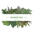 exotic tropical leaves frame vector image vector image