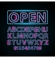 pink and blue neon lamp letters font show vector image
