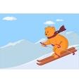 teddy-bear skies vector image