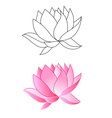 lotus coloring vector image vector image