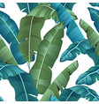 seamless turquoise and green tropical pattern vector image vector image