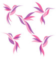 set abstract colorful design hummingbird vector image
