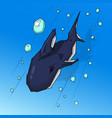 shark in the water vector image vector image
