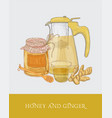transparent teapot or pitcher with strainer cup vector image vector image