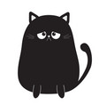 black cute sad grumpy cat kitten bad emotion vector image
