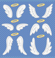 cartoon angel wings holy angelic nimbus and vector image vector image