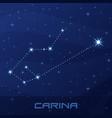 constellation carina keel night star sky vector image vector image